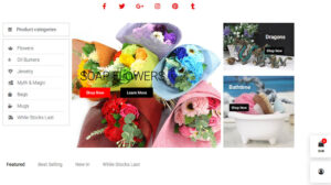 Online Webpage Websites Cheshire Gift Shop