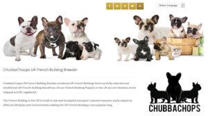Online Webpage Websites ChubbaChops