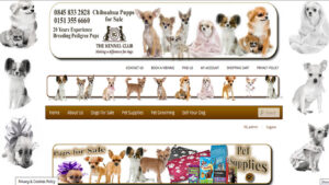 Online Webpage Websites dogs site